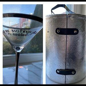 Posh Martini Glass in Silver Carry Case